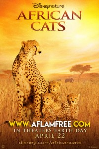 African Cats 2011