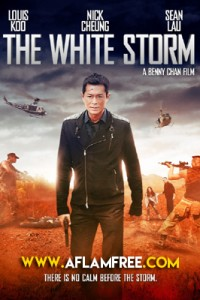 The White Storm 2013